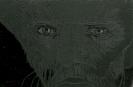 Vincent-4